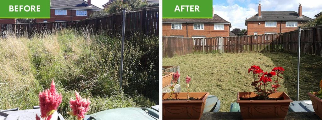 Garden cleanup - before and after